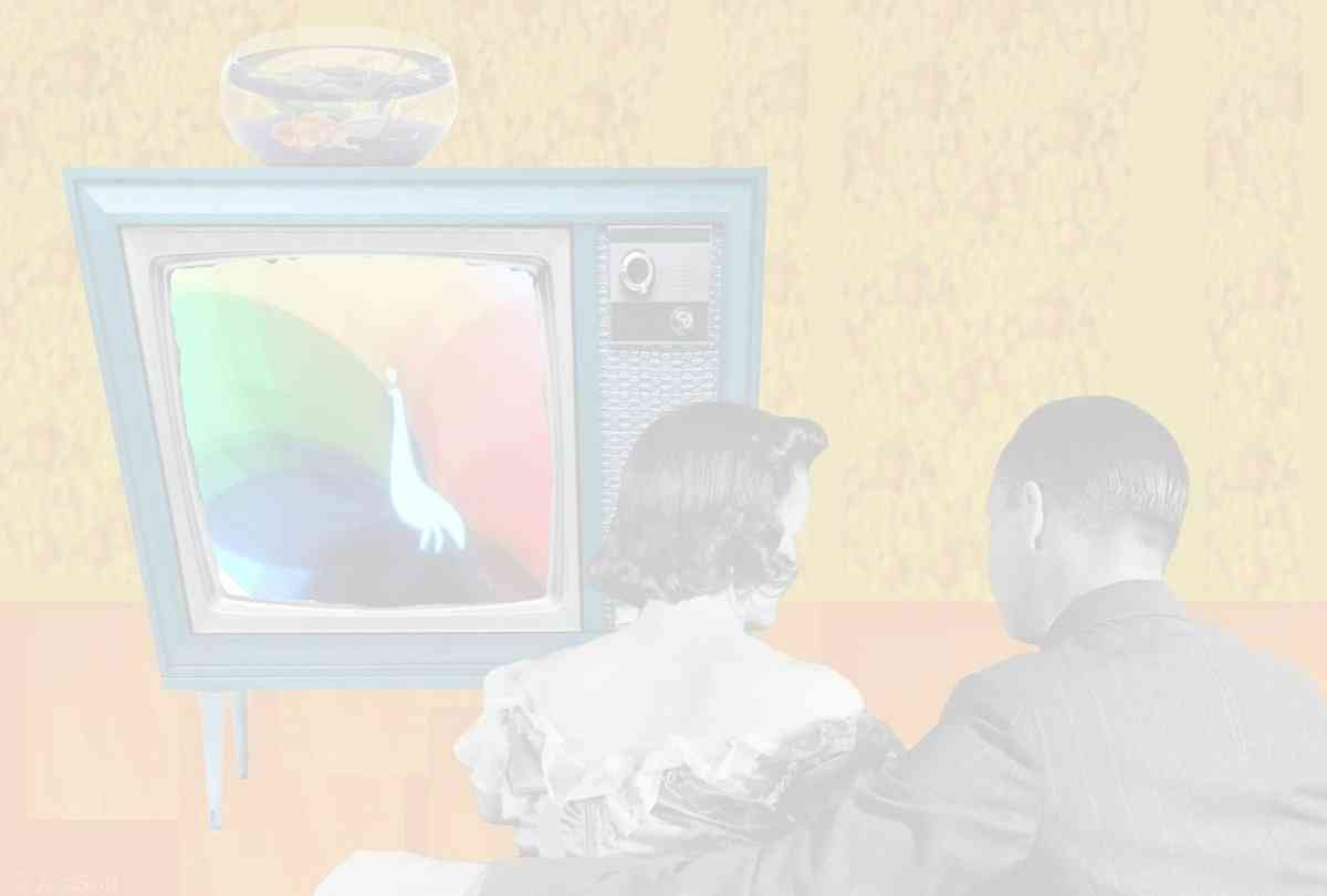 Color TV Set
